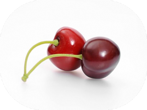 Artificial Fruit Cherry Bunch Of 2, x 4